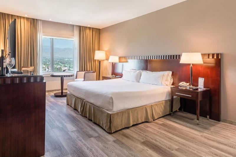 Diplomatic Hotel Mendoza