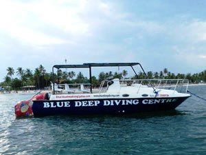blue-deep-diving-sri-lanka