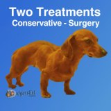 Two disc episode treatment options – Shortcut Thru IVDD
