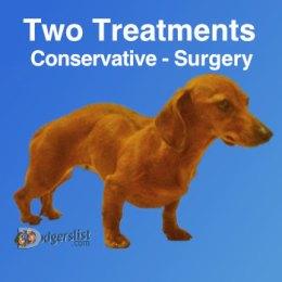 Two disc episode treatment options – Shortcut Thru IVDD
