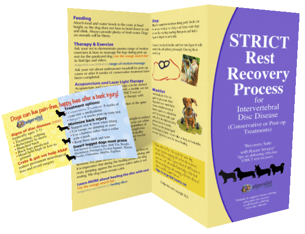 Order free literature cards brochures