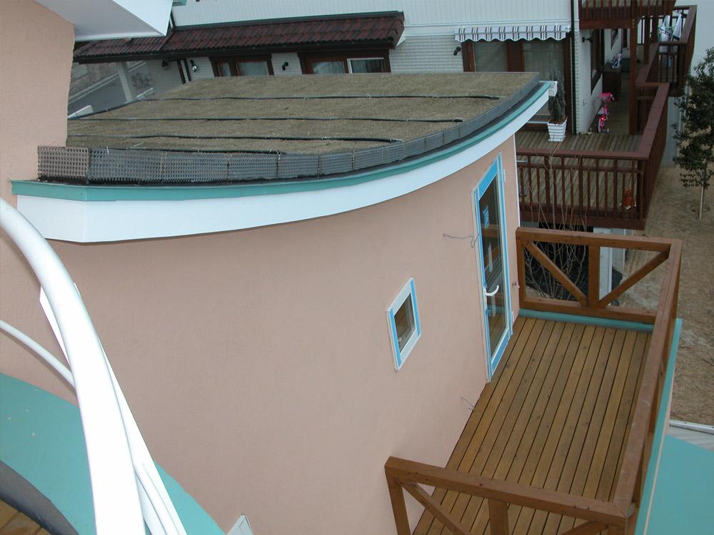 屋上緑化の様子3