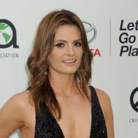 Stana Katic Biography, net worth, husband, film, career, net worth, awards, wedding, Canadian actress, dress, shoes, American Awards.