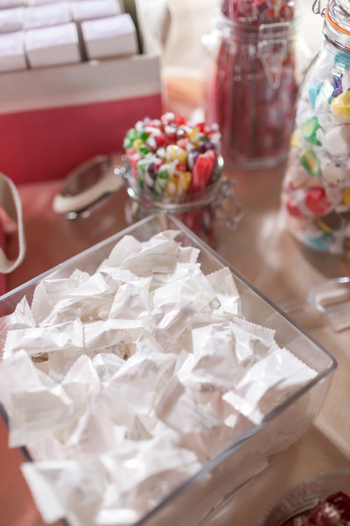 Rustic Chic Barn Decor - Candy Bar