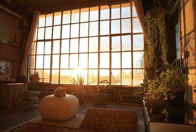 Ambiente industrial com plantas