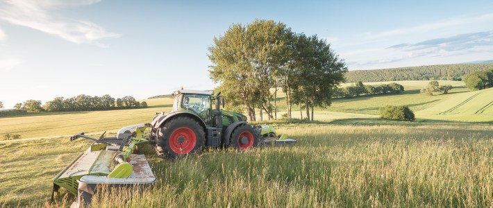 Fendt 933 mit Claas Disco 1100