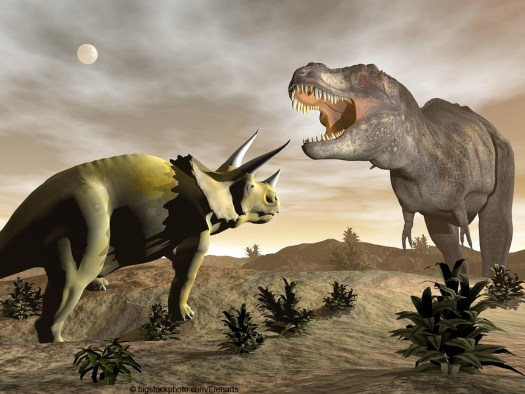 Triceratops and Tyrannosaurus Rex