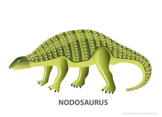 Nodosaurus Dinosaur