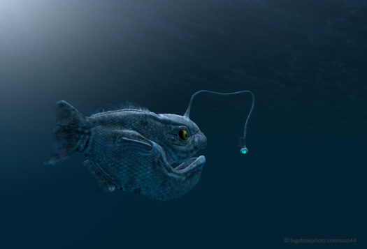Deception in Politics, Religion, and Anglerfish