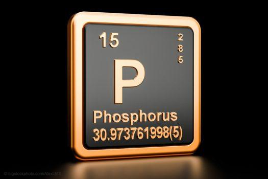 Life Needs Phosphorus