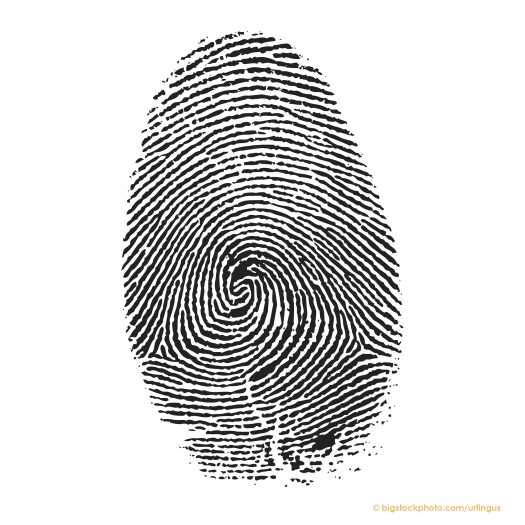 Why We Have Fingerprints