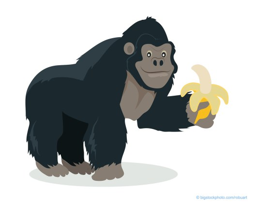 Gorilla Named Koko Cartoon