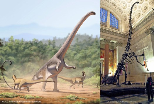 Dinosaur Blood Pressure in Barosaurus