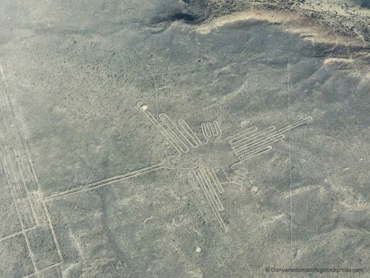Nazca Lines and Birds