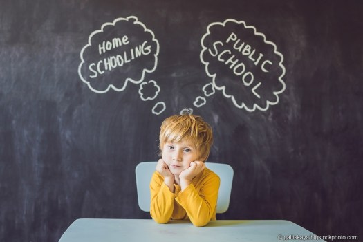 Why Homeschooling?