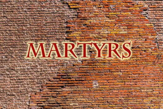 Christian Martyr Data Discrepencies
