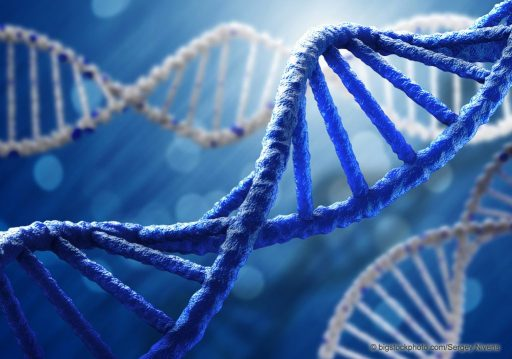 Life from Non-life by Chance - DNA Molecule