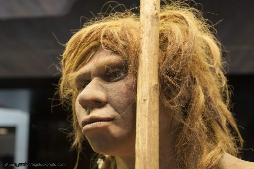 Data on Neanderthals and DNA - Neanderthal Woman