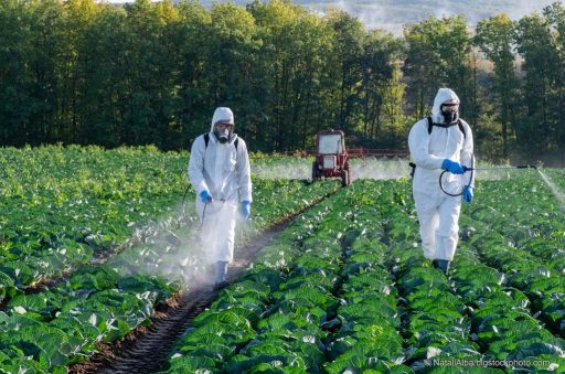 Dangerous Chemicals Cause Human Suffering