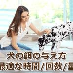 犬の餌を与える際の注意点。最適な時間や回数