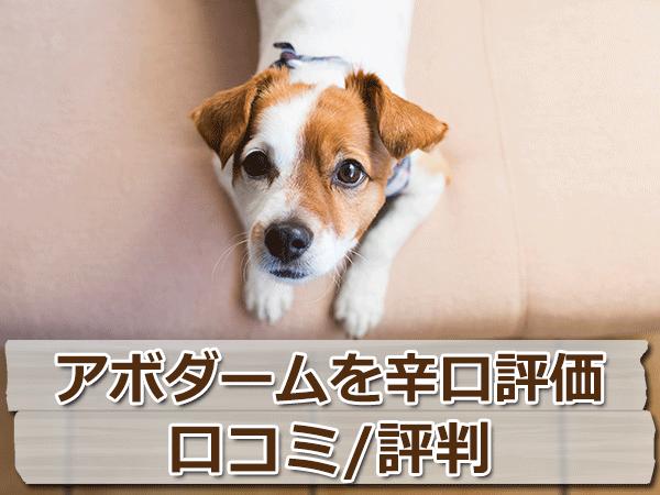 アボダーム・ドッグフードを辛口評価【口コミ・評判】