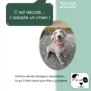 couverture du livret adoption by DogEduc