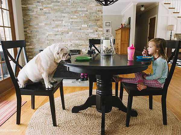 PHOTOS: A Girl & Her Bulldog Will Teach You About Family| Animals & Pets, Cute Pets, Dogs