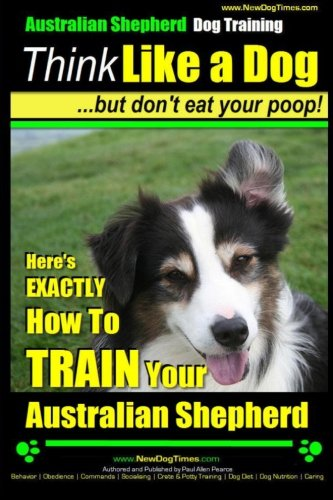 Australian Shepherd Training: Typical Health Issues To Take Into Account