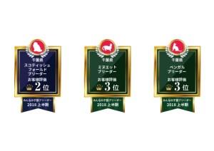 ドックライン_受賞2018上半期_猫