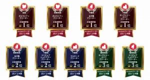 ドックライン_受賞2017上半期