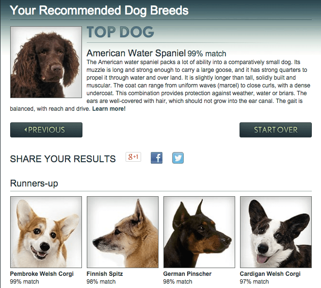 8 dog breed selector tools for find your perfect dog
