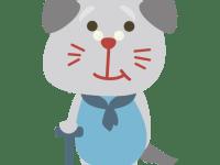 犬のシニアステージ