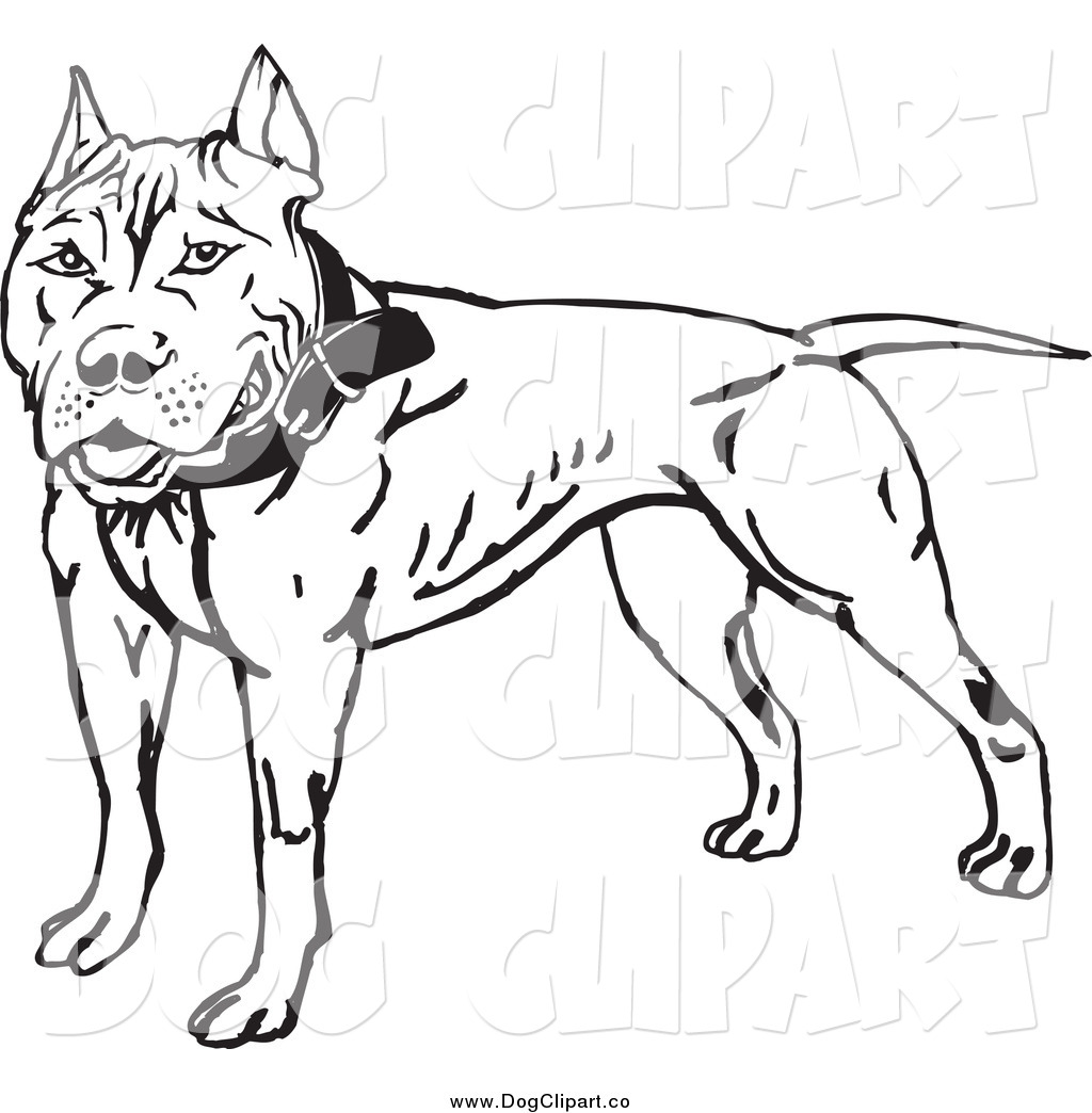 Royalty Free Stock Dog Designs Of Terriers