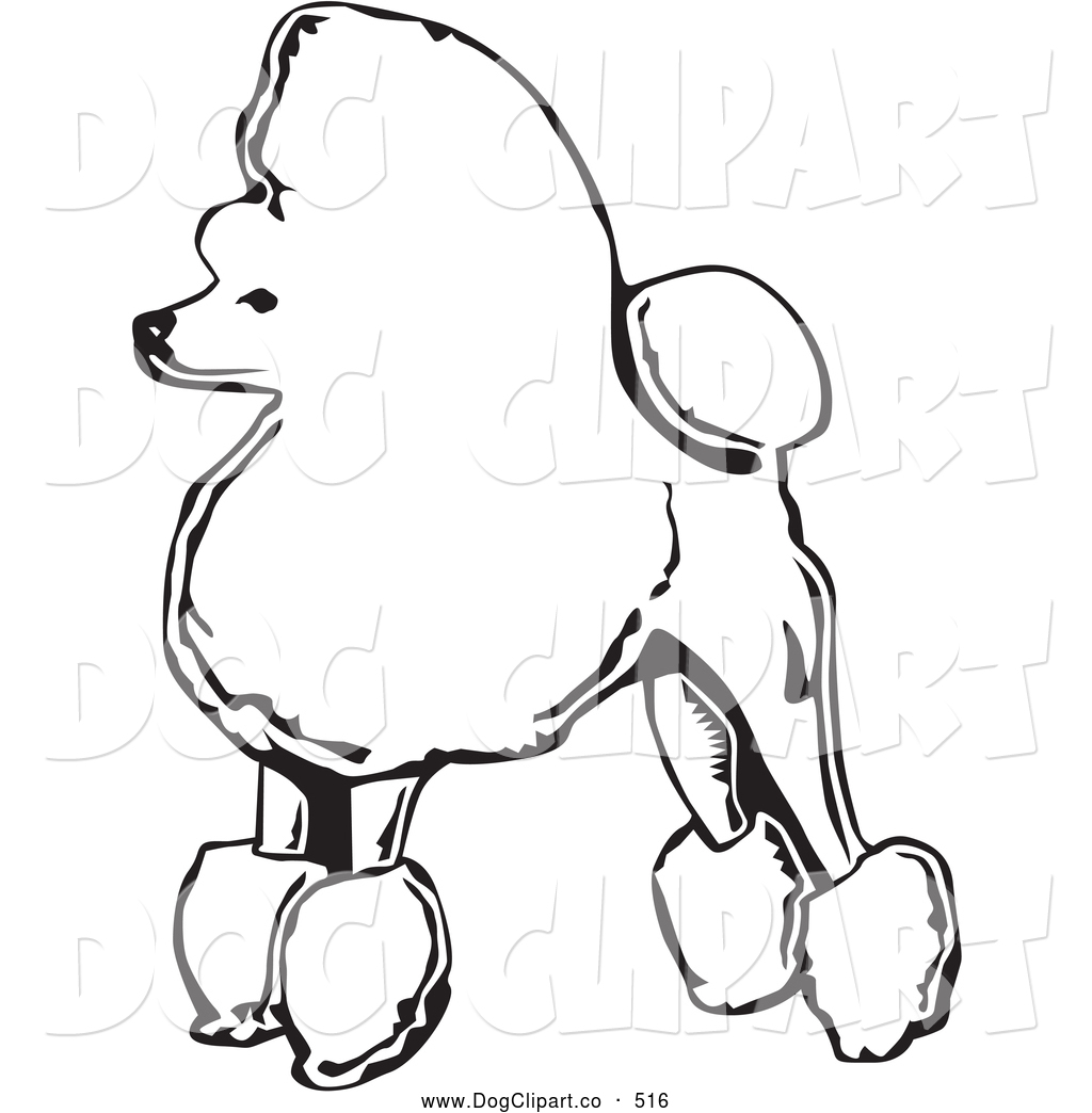 Royalty Free Stock Dog Designs Of Poodles