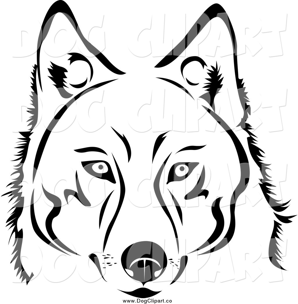 Vector Clip Art Of A Face Of A Black And White Husky Dog