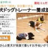 Cocoro(こころ)式 家庭犬ドッグトレーナー養成講座 受講者募集