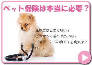 ペット保険は本当に必要?