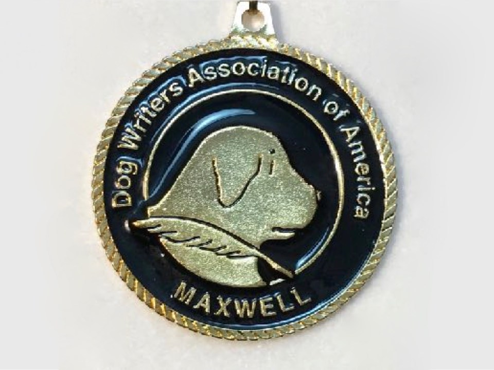 Maxwell Award Medallion for 2016 book on health