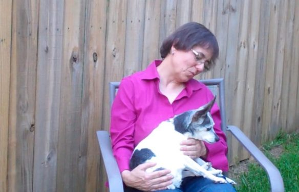 Cricket with advanced cognitive dysfunction late in her life