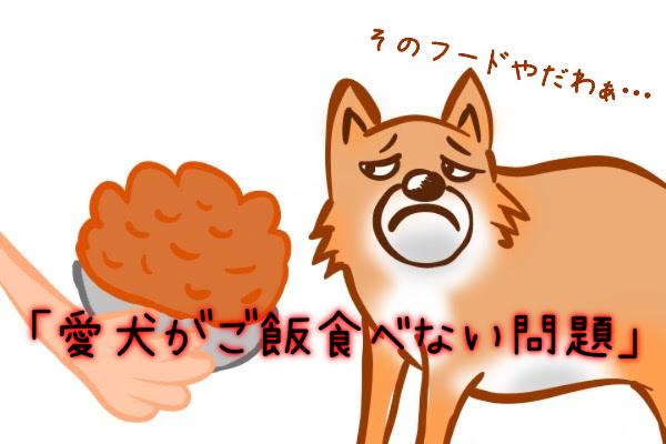 愛犬がご飯食べない問題