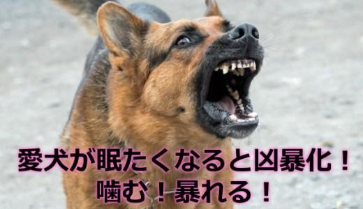 犬が寝る前にぐずる!噛み癖・暴れるを防ぐ方法|レジバッグで解決