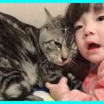 同月齢のお子さんに猫がギューってされてとても可愛すぎる動画