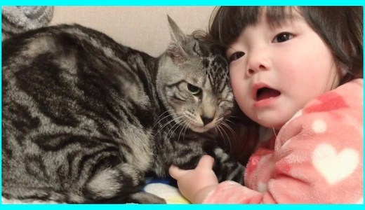 小さな子供たちと猫ちゃんのふれあいの動画