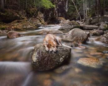 Blog55 Theron Humphrey Photography 04