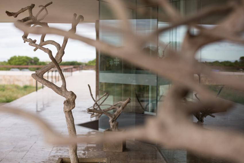Árboles a modo de esculturas en la puerta del PARADOR.