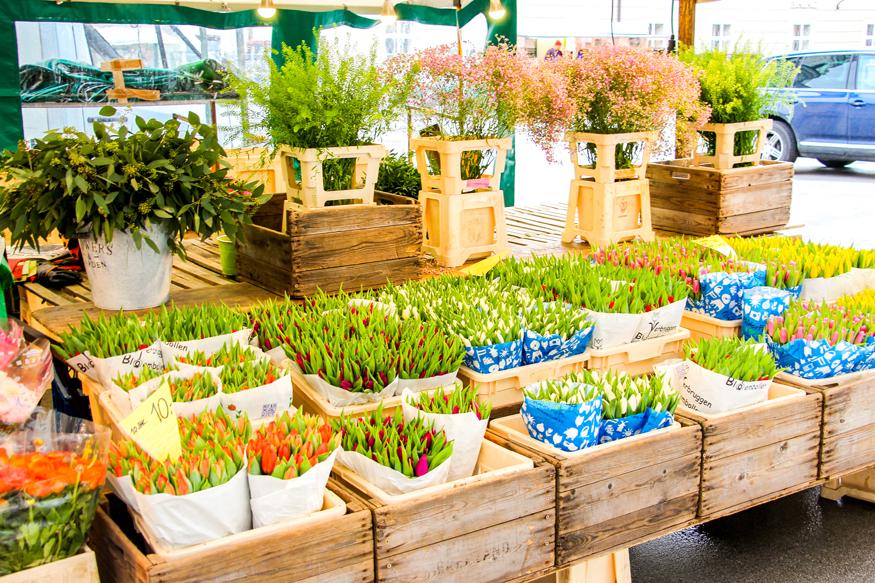 Tulipanes en el mercado.