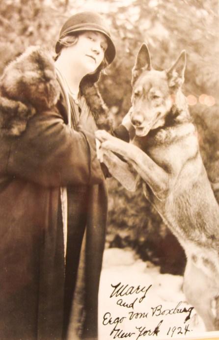 Clienta del Sacher con su perro.