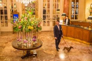 Siempre hay estupendos arreglos de flores en el lobby.
