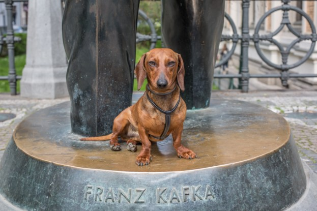 monumento a Franz Kafka.