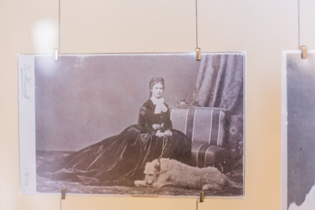 La emperatriz Sissi con uno de sus perros.